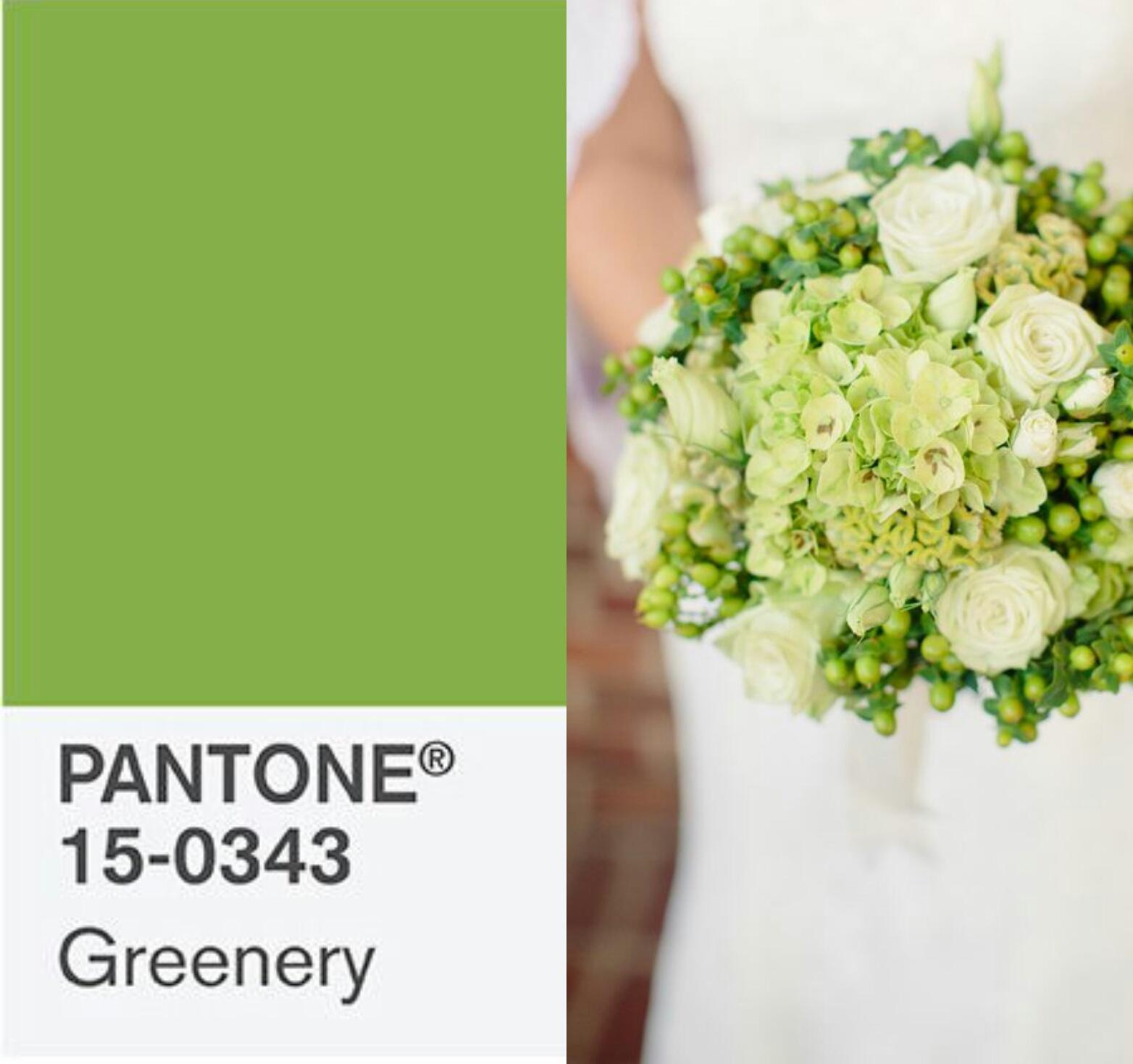 greenery cor do ano 2017 pantone casamento